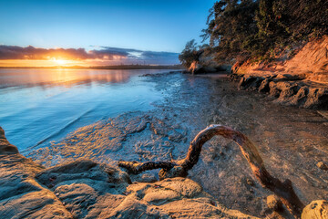 Point Chevalier Auckland New Zealand Beach Sunset Sunrise