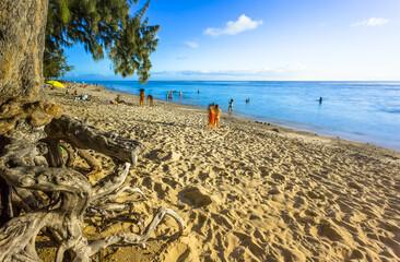 beach of l'Hermitage, Saint-Gilles-Les-Bains, Reunion Island