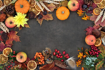 Autumn nature study background border composition with food, flora and fauna on lokta background. Harvest festival theme. Top view.