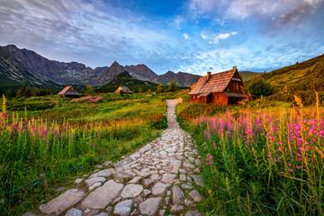 Beautiful summer sunrise in the mountains - Hala Gasienicowa in Poland - Tatras