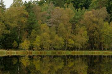 jesienny las i niebo odbite w wodach jeziora, piękny pejzaż lasu