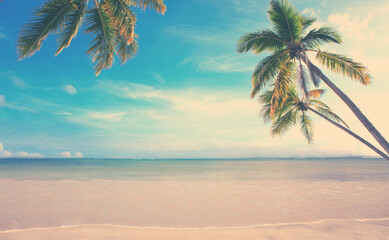 Caribbean sea and green palm trees on white tropical beach.