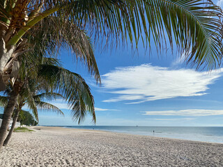 tropical white sandy beach looking out to sea fringed by palm trees