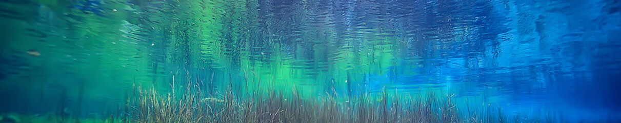 view underwater lake, freshwater landscape ecosystem clear water