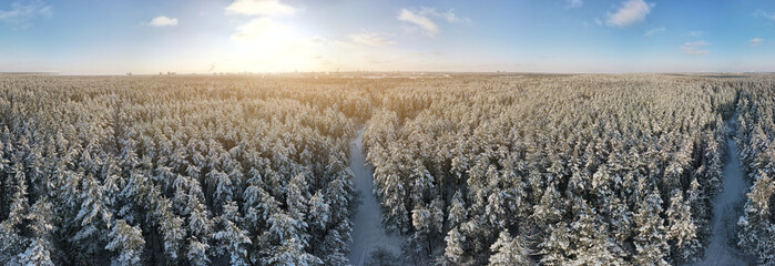 flying drone, Winter landscape, view of snow-covered land and snow-covered forest on a sunny day