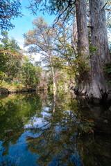 Hamilton Pool Preserve, Travis County Park, TX