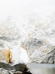 USA, Washington State. Alpine Lakes Wilderness, Enchantment Lakes, Larch trees and snow