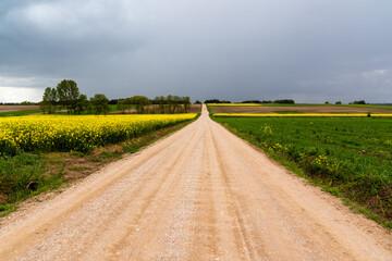 Wiosenna cisza przed burzą, Podlasie, Polska