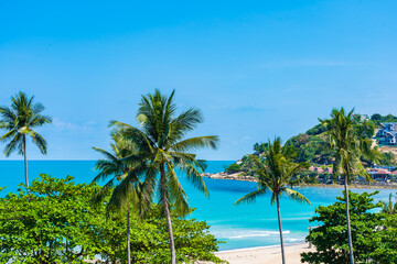 Beautiful tropical beach sea ocean with coconut palm tree