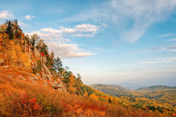 View of the mountain taiga in the autumn forest among colorful trees in the mountains in bright sunny weather in Kolyvan, Altai