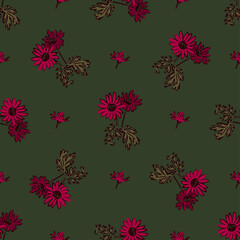 Chrysanthemum flowers drawing, bloom in pink colors, floral seamless pattern, nature abstract background vector. Line art botanical illustration graphic design print, fabric. Trendy green wallpaper