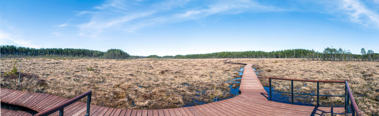 Manes (dunes) in the swamp. State Nature Reserve Sestroretskoe Swamp. Beloostrov. Resort area. St. Petersburg. Russia