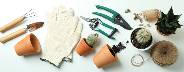 Concept of gardening on white background, top view