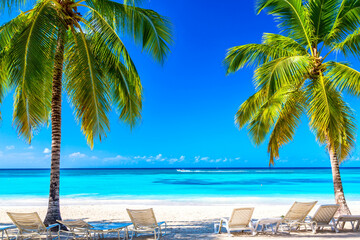 Coconut palm trees with sunloungers on the caribbean tropical beach. Saona Island, Dominican Republic. Vacation travel background