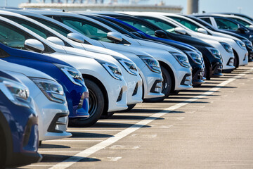 Row of brand new cars lined up outdoors in a parking lot.