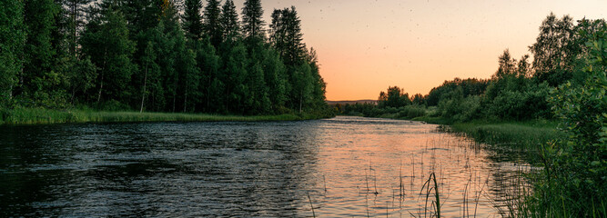 Colorful sunset sky over taiga forest. Natural summer background. Banner.