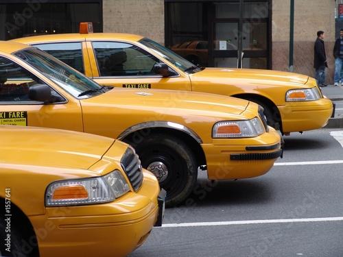 yellow cap_4