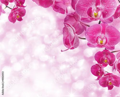 Kwiaty orchidei z kropli wody, kartki z życzeniami