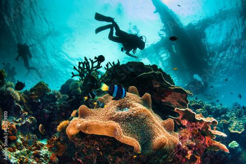 Busy Sea Scape