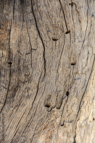 Tekstura do tla