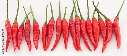 Czerwonego chili pieprz odizolowywający na białym tle