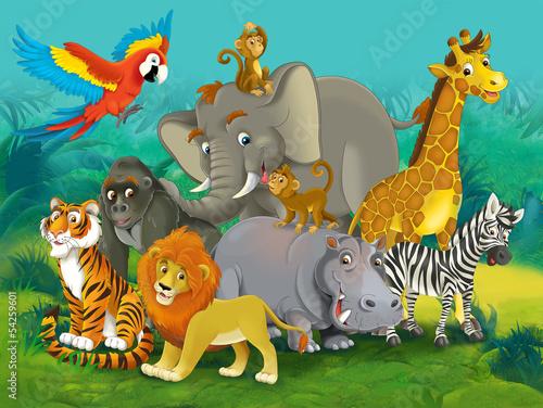 Cartoon safari - ilustracja dla dzieci