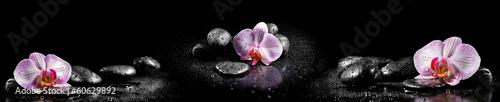 Horyzontalna panorama z różowymi orchideami i zen kamieniami na czarnych ba