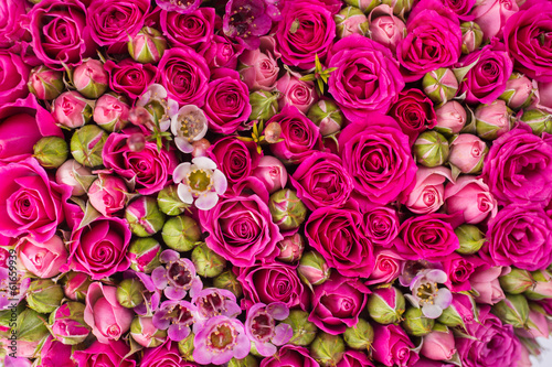Streszczenie tło kwiatów.