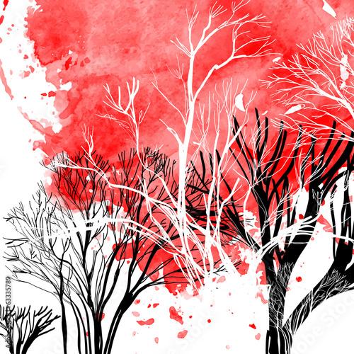 Streszczenie sylwetka drzew