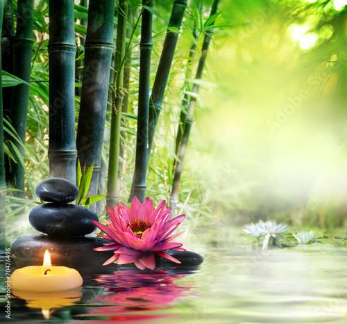 masaż w przyrodzie - lilia, kamienie, bambus - zen koncepcja