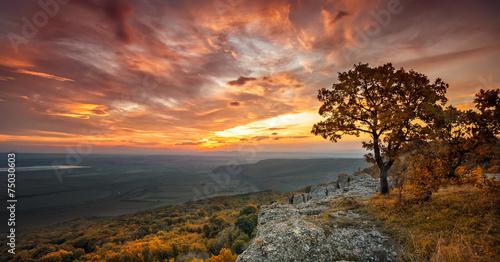 Wspaniały widok ze wzgórza z jesiennym lasem o zachodzie słońca