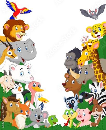 Tło dzikich zwierząt