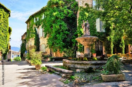 Obfitolistny rynek z fontanną w malowniczej wiosce w Provence, Francja