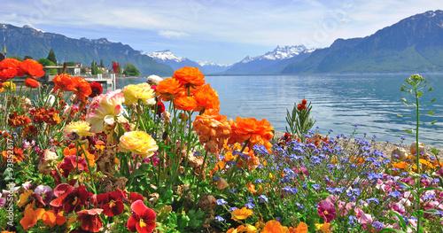 Kwitną wiosenne kwiaty