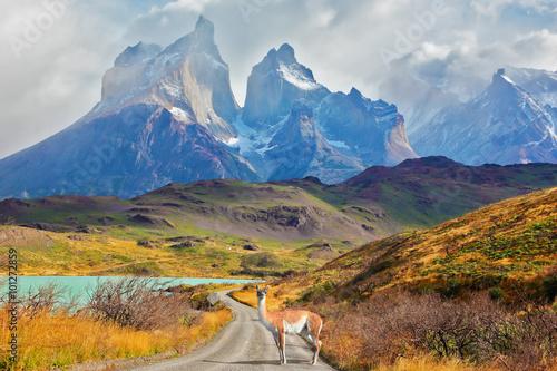 Majestatyczny dzień w Patagonii