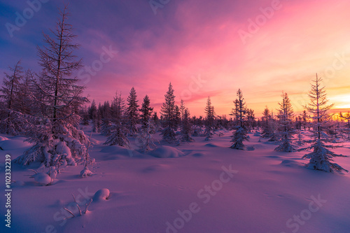 Zima krajobraz z lasem, chmurami na niebieskim niebie i słońcem