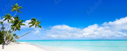 Panorama plaży z błękitną wodą i palmami
