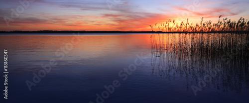 Zachód słońca nad jeziorem z trzcinami