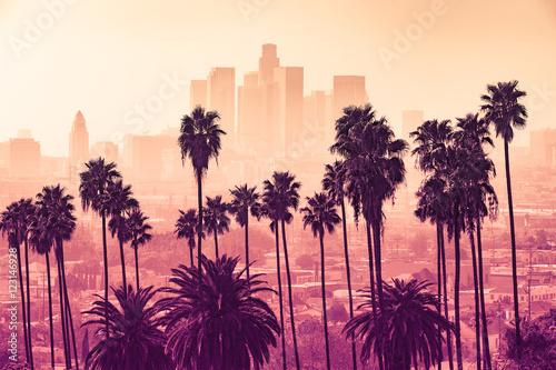 Panoramę Los Angeles z palmami na pierwszym planie