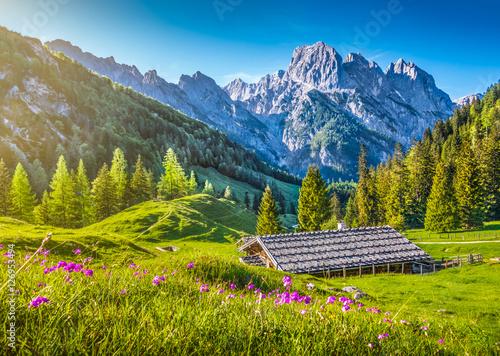 Idyllic alpine scenery with mountain chalet at sunset