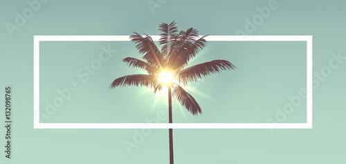 Sylwetka tropikalne palmy przed działaniem promieni słonecznych. Z białą ramą