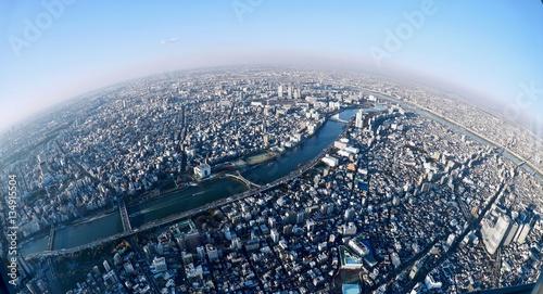 Widok na duże miasto z najwyższej wieży w Sumida. Tokio. Japonia.