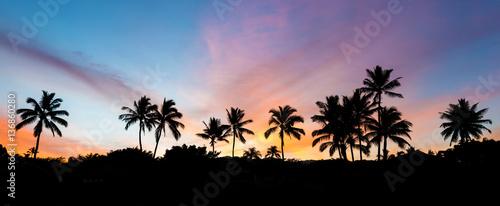 tropikalny wschód słońca z palmami i kolorowym niebem na wyspie Maui na Hawajach z tajnej plaży
