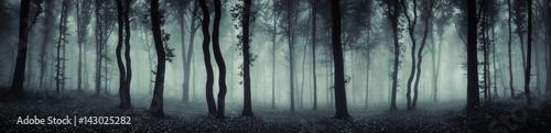 ciemny las panorama fantasy krajobraz