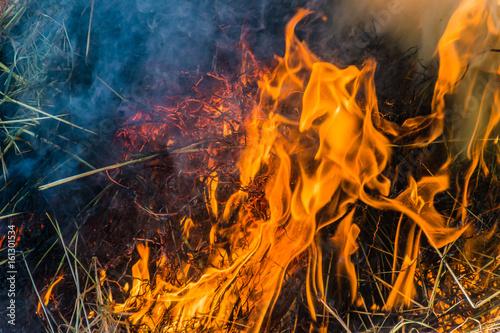 Wypalanie słomy na wsi, widok z bliska