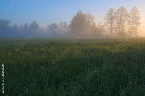 Światło poranka