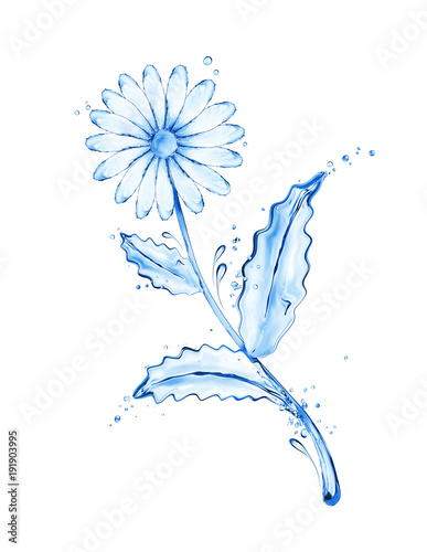 Chamomile flower made of water splashes on white background