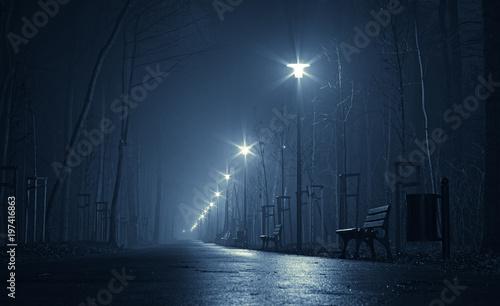 noc w parku
