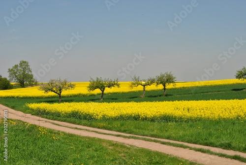 Wiosna w rolnictwie