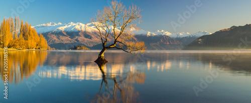 Lake Wanaka, Otago, South Island, Nowa Zelandia